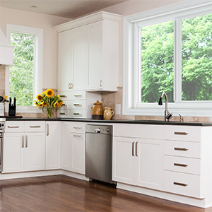 Horizontal Rolling Window Series 4110A in Fort Myers