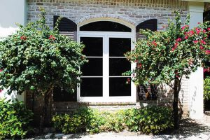 Read more about the article Which is Better: Low-E Glass or Tinted Window Film?